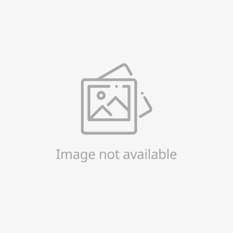 Morning Dew Earrings - Black South Sea
